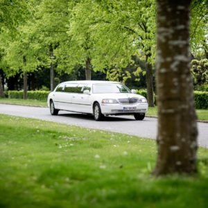 Using a Limo Rental Service Near Me