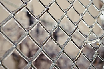 Some of the Benefits of Wire Netting: Why You Should Consider This Option